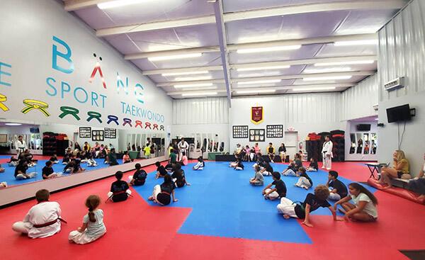 Bang Elite Sport Taekwondo